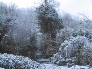 snow 222